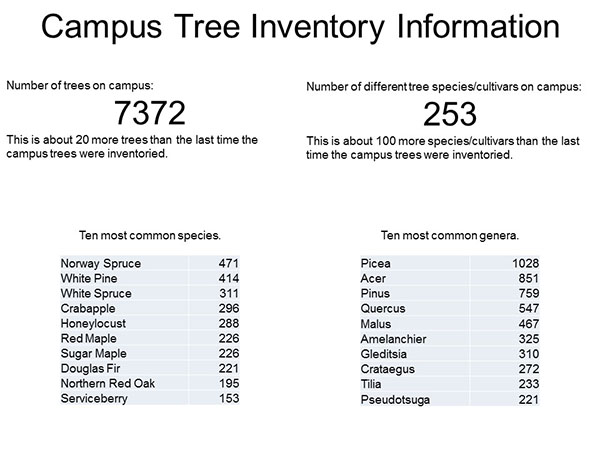Campus Tree Data