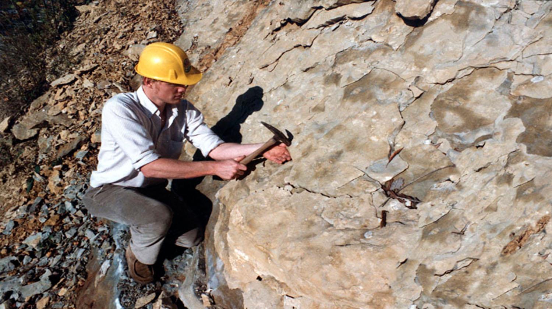 geologist ile ilgili görsel sonucu