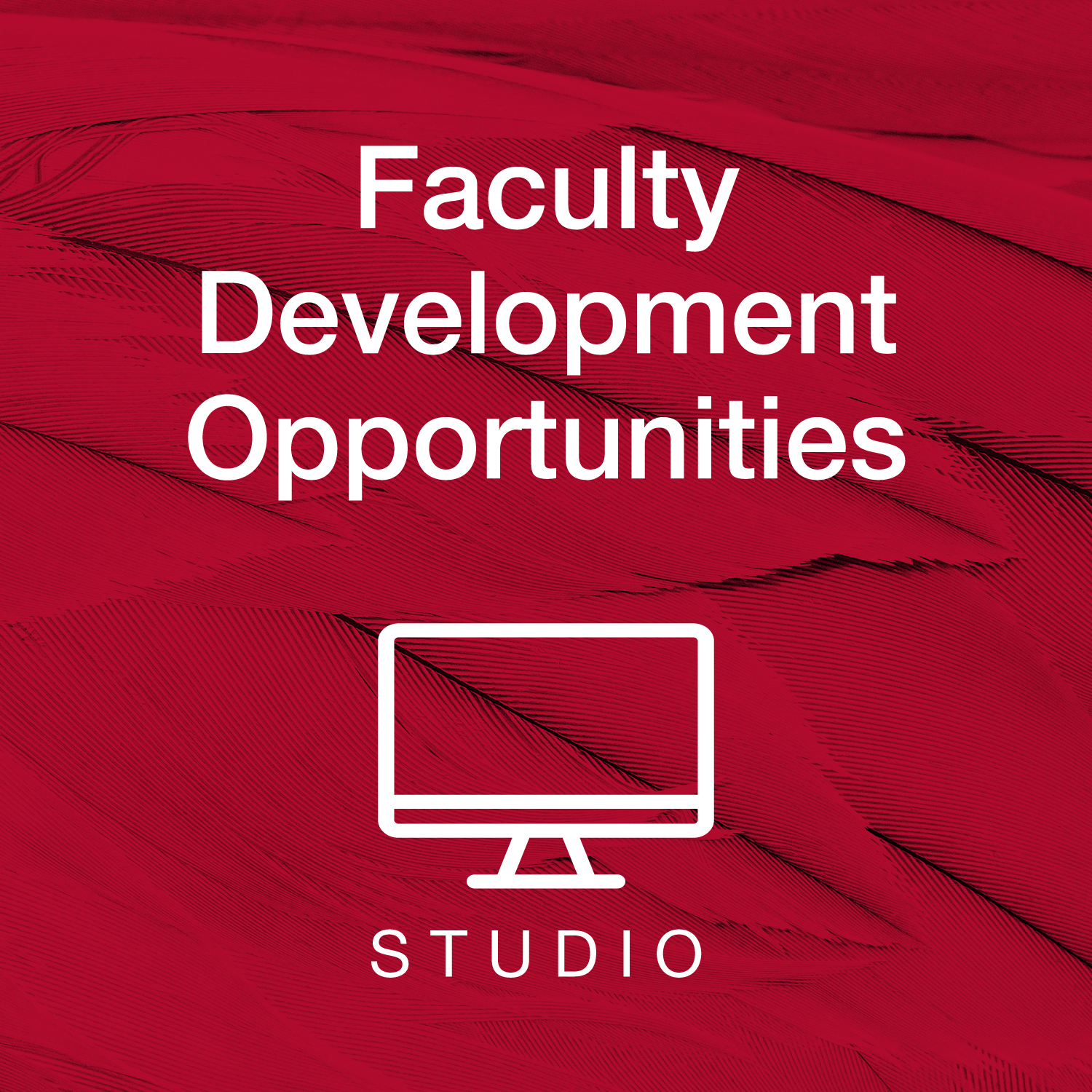 Faculty Development Opportunities - Studio
