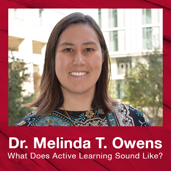 Melinda T. Owens - What Does Active Learning Look Like?
