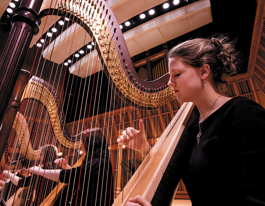 harpist in Sursa Hall