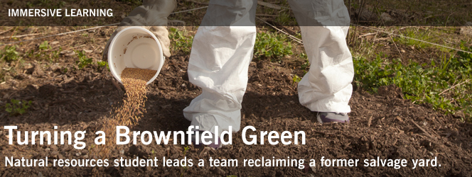 Turning a Brownfield Green