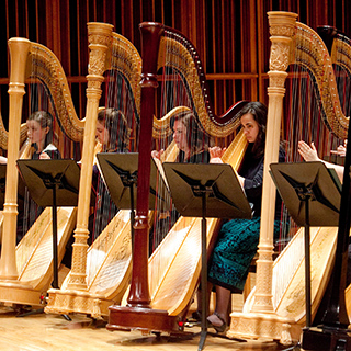 The Harp Ensemble performing on stage
