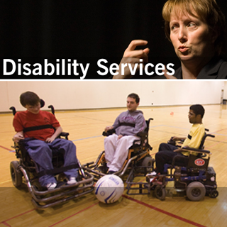 partial screenshot of disability services website