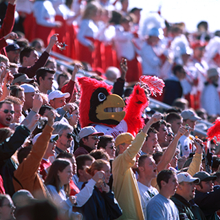 Cardinal fans cheer at a football game