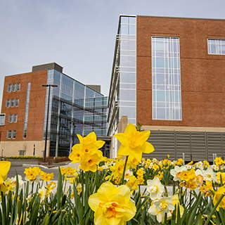 Health Professions Building on a Spring day