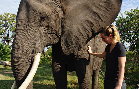 Allison Tourville with elephant